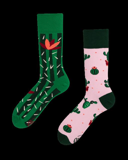 many-mornings-socks-summer-cactus-high-mode-kado1